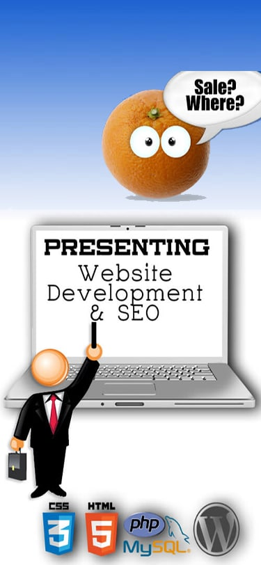 Website Development and SEO